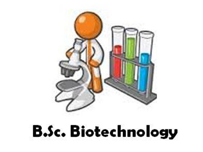 BSc Botany  &  Biotechnology